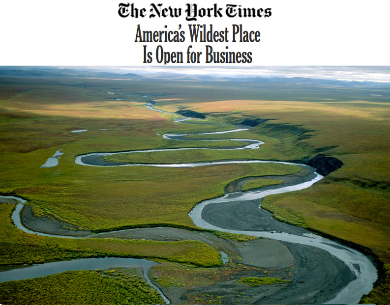 Western Arctic News New York Times